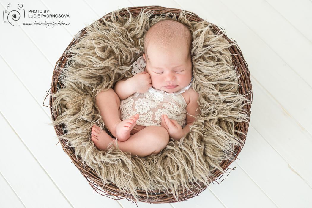newborn_jihlava_foceni